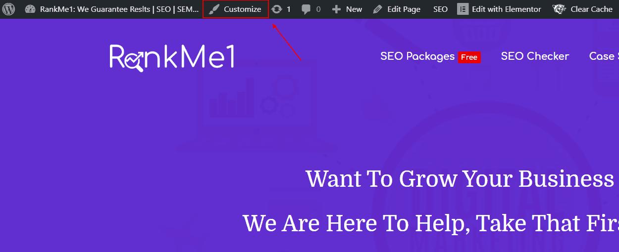 Wordpress Screenshot Showing The Customize Button